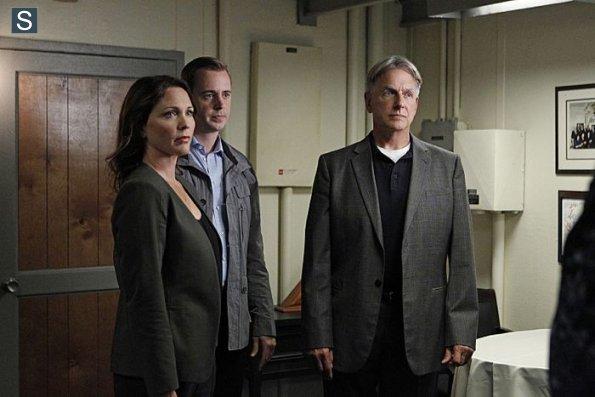 NCIS - Episode 11.21 - Alleged - Promotional Photos (6)_595_slogo