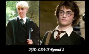 LDWS8