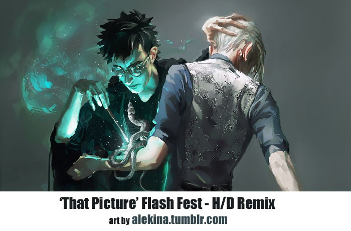 'That Picture' Flash Fest (Harry/Draco)
