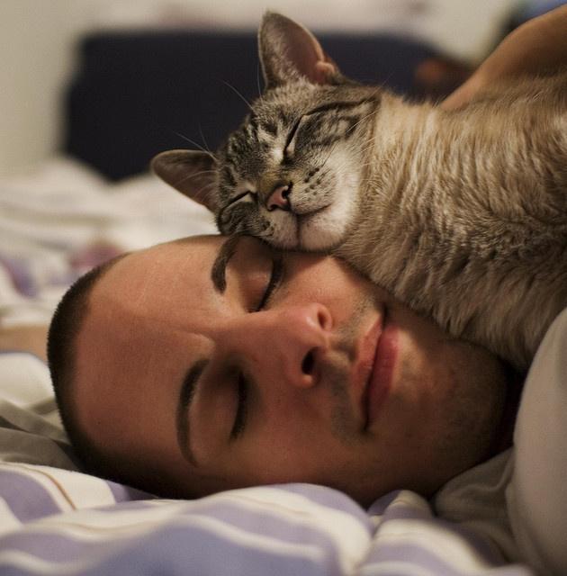 год сон аскариды в постели скрывает, что