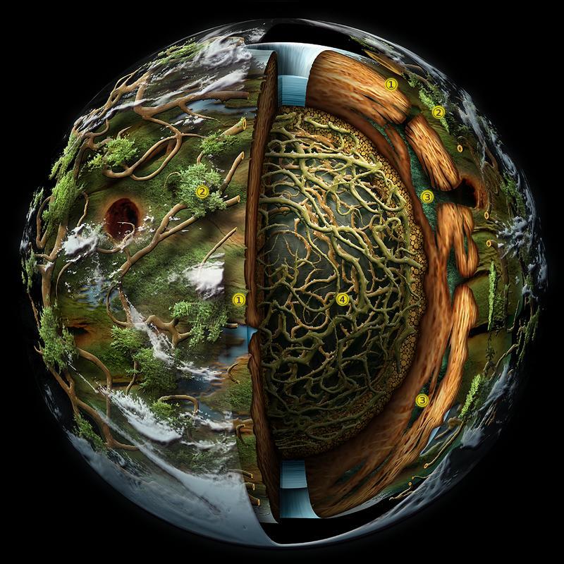 Плазмоиды рождают планеты как семена.