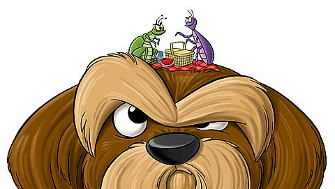 dog-fleas_cartoon