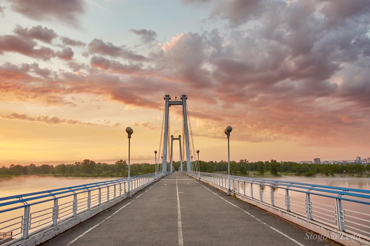 они способны фотографировать рассвет с моста бесстрашный щенок-далматинец пятнами