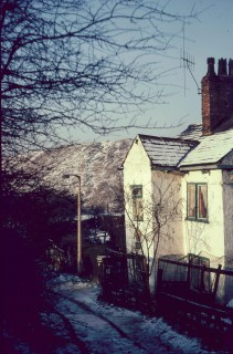Even in the centre of the city, a quaint cottage lurks...