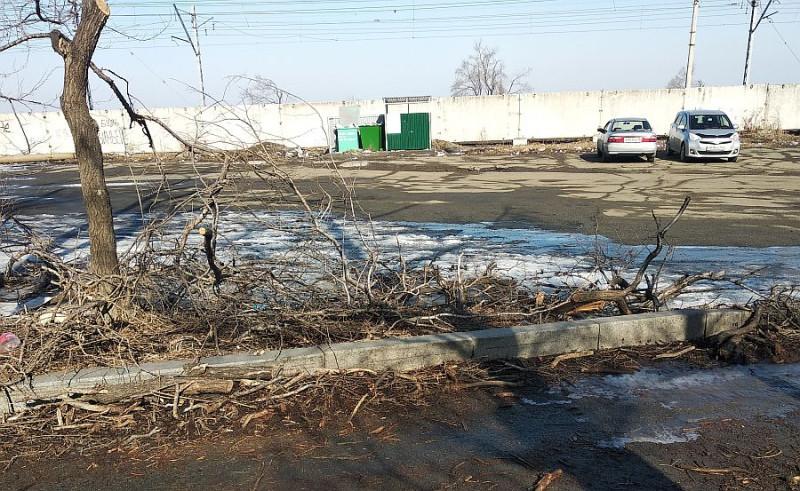 Ещё левее стоянки — бывшая разгрузочная площадь РЖД. Сейчас она открестилась от этой поляны за ненадобностью. Но, судя по тому, что лёд и валежник за 4 месяца здесь никто так и не убирал — городским властям это место тоже не нужно.