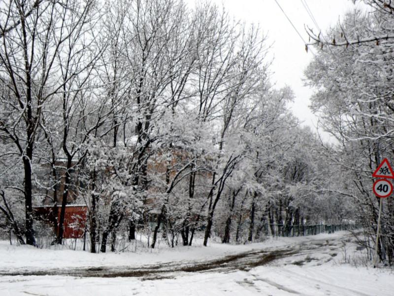 Из-за только одного ряда заснеженных деревьев нашу школу практически не видно.