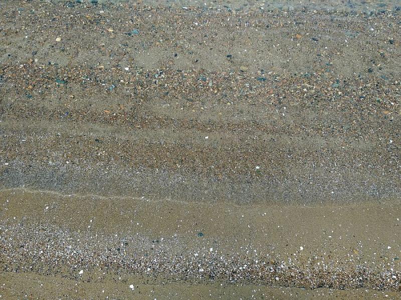 """Последние годы вода в Амурском заливе стала почище. Не считая дней, когда тайфуном сюда смывает всё вокруг и взбаламучивает со дна ил и песок. Ну, и сезона """" цветения """" водорослей, который начинается в середине июня и совпадает с сезоном подготовки ко Дню города и дню ВМФ."""