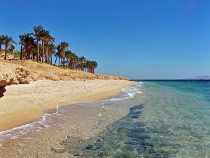 Красное-море-фото-300x225