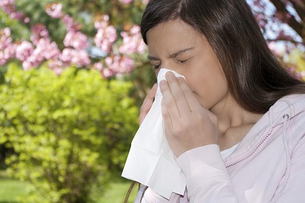 allergy-lj