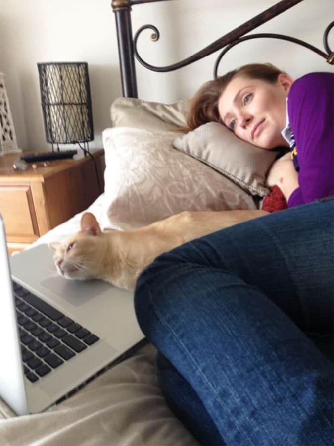 Коты и их люди: на одной волне