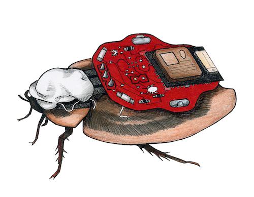 RoboRoach-Drawing