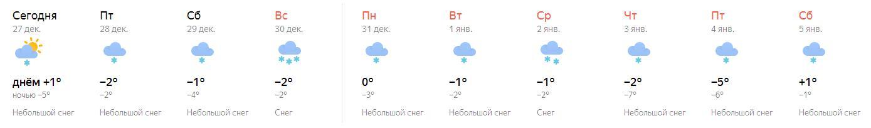 снег 2018-2019.JPG