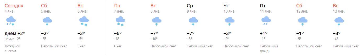 снег - продолжается - 2019.JPG
