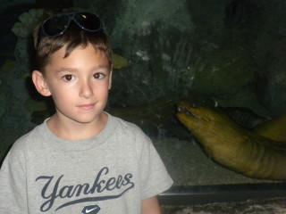 At the ALB aquarium