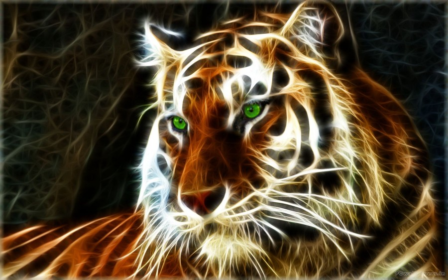 tartistic_tiger_372116
