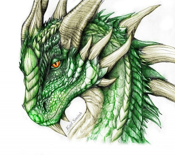 green_dragon_by_karl_smink-d4oujan