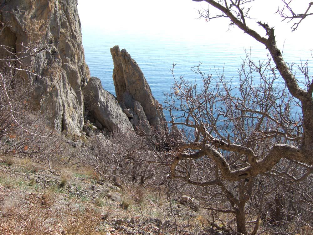 2013_1110юбилей-Крым-ноябрь0254 мини