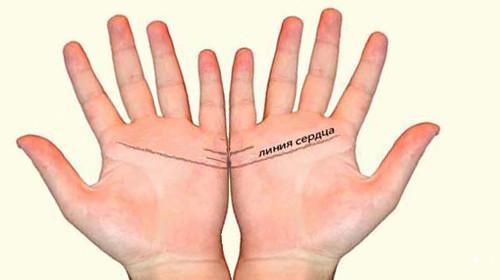 Линия первого секса на руке человека