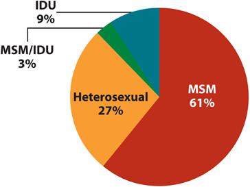 Наиболее распространенные пути инфицирования ВИЧ - 2009 год США