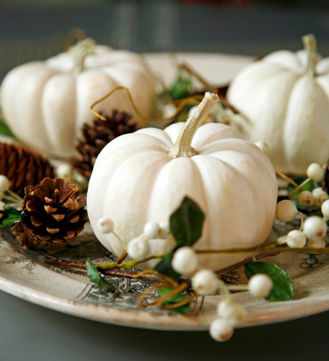 white pumpkins3