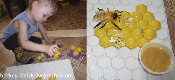 как делают мед пчелы
