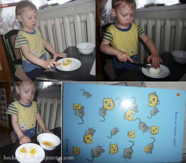 яйцо разрез