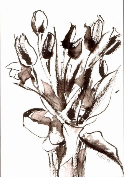 tulips black