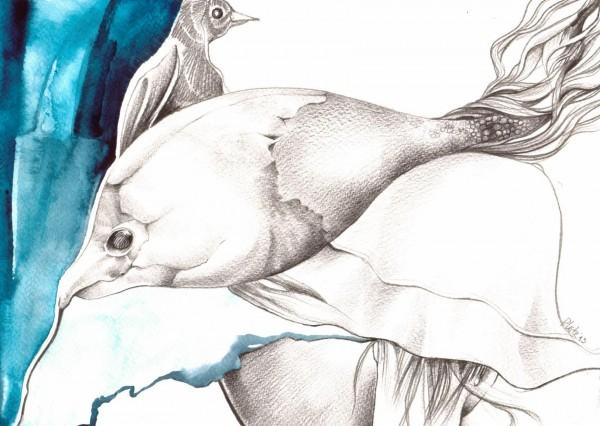 fishhatbird