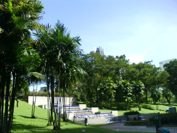 palms fountainJPG