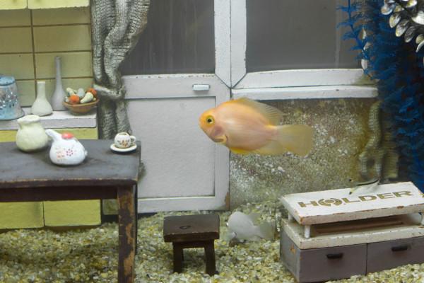 знаменитая рыбка Смирново