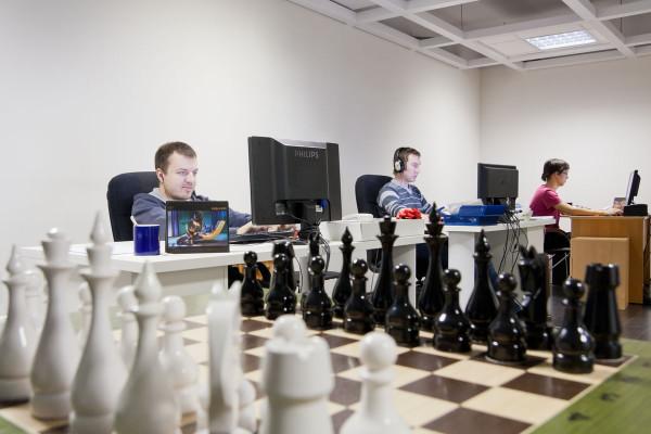 программисты-шахматисты