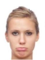facial-expressions.bmp4-3-1