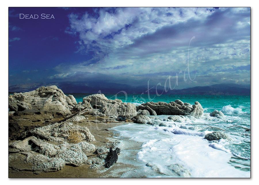 Dead Sea Postcard