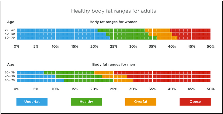 healthy-body-fat-ranges-for-adults-min