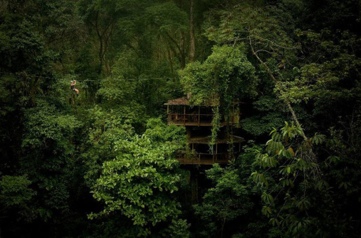 the luscious natural forrest of costa rica