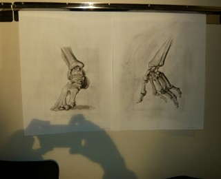 Life Drawing and Anatomy bone studies by Jeff Feb 2010
