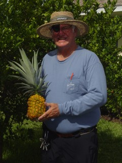Hoppy and his home gown pineapple.  2010