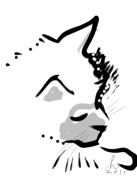 Cat drawing using Zen Brush for the iPad Honoria Starbuck NV11