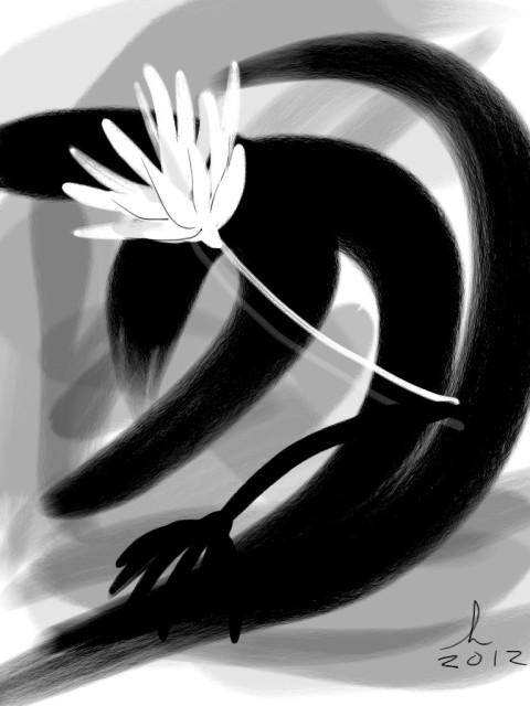 Zilker Park Lotus Blossom 16 JA 12 Honoria Starbuck