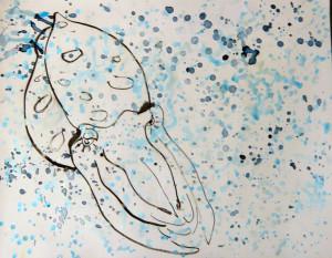 Cuttlefish2013