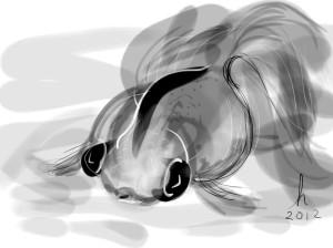 GoldfishIdeogram