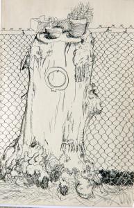 KaysStumpTornoto1976