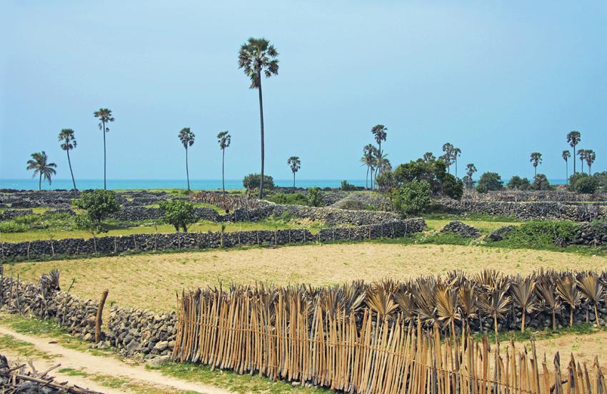земельные участки на острове Делфт мал
