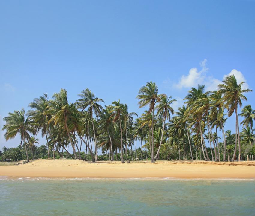 пляж Пойнт Педро пано мал