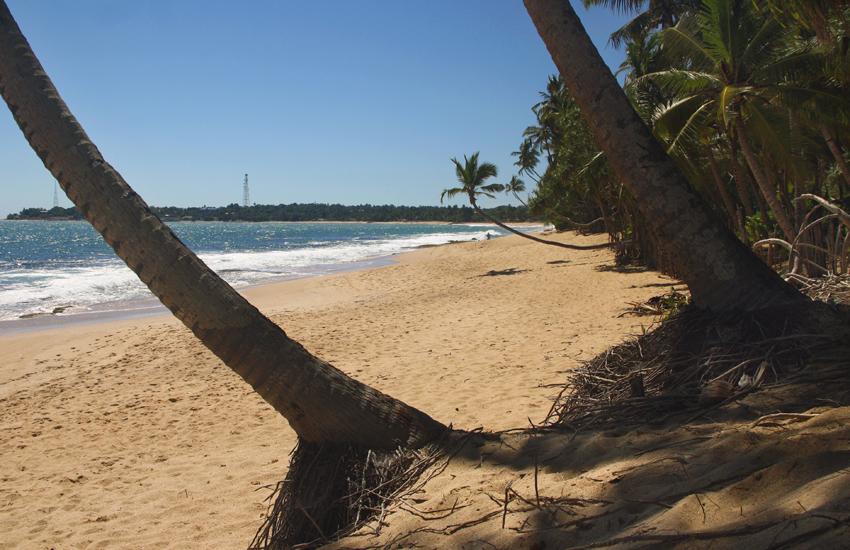 пляж Тангалле3