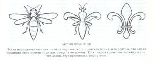 пчёлы лилии