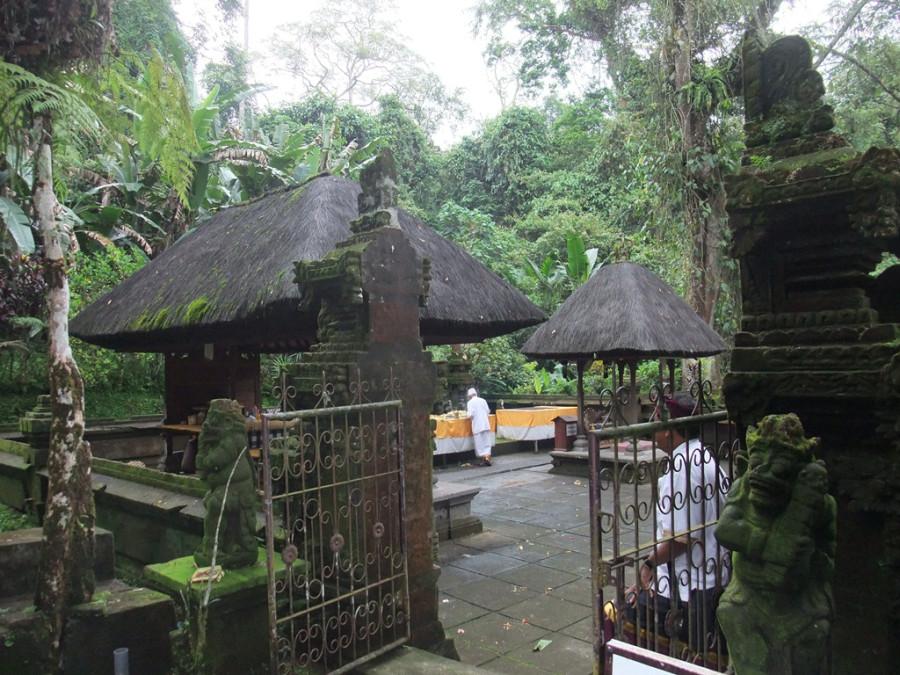 Вот он, гид-балинезиец - справа. (Слева - holy man, на алтаре хиндуистского храма сжигает отслужившие свое приношения)
