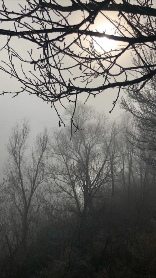 фото Оксана Васильчук