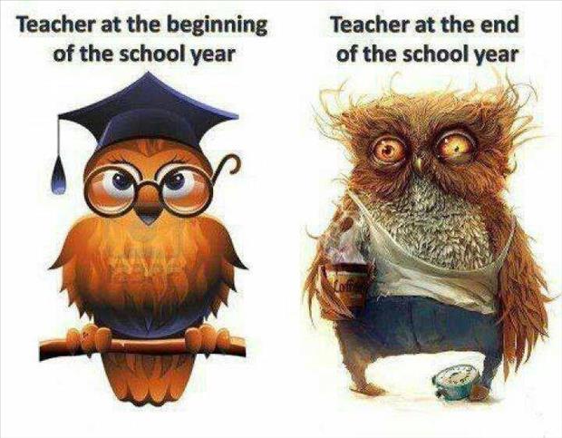 teachers_year