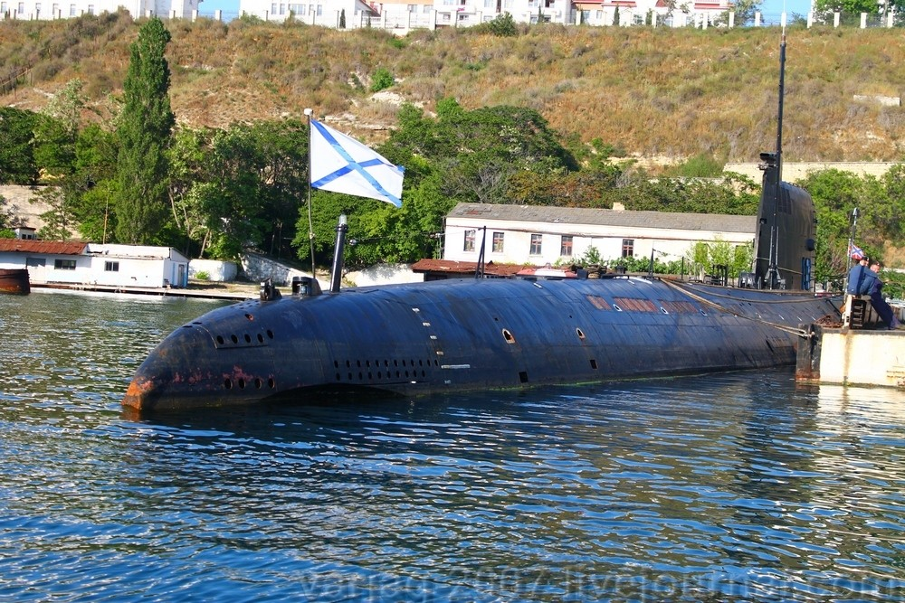 Голубой кит 2